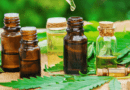 CBD Market Size to Reach USD 2,207.16 Million by 2026 at Significant CAGR of 125.58%, Predicts Market Research Future (MRFR)